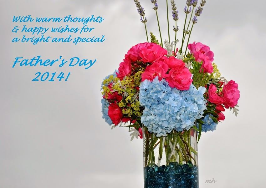 Father's Day 2014 (31)