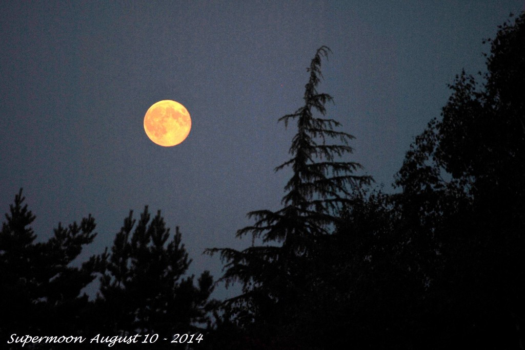 Super Moon August 10 - 2014 (5)