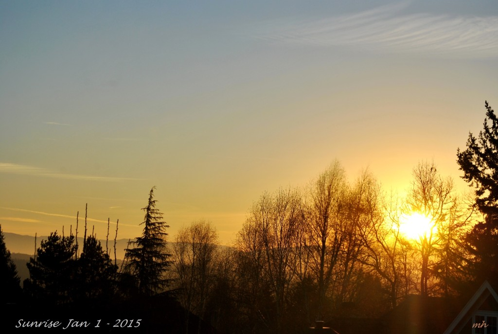 Sunrise Jan 1 - 2015