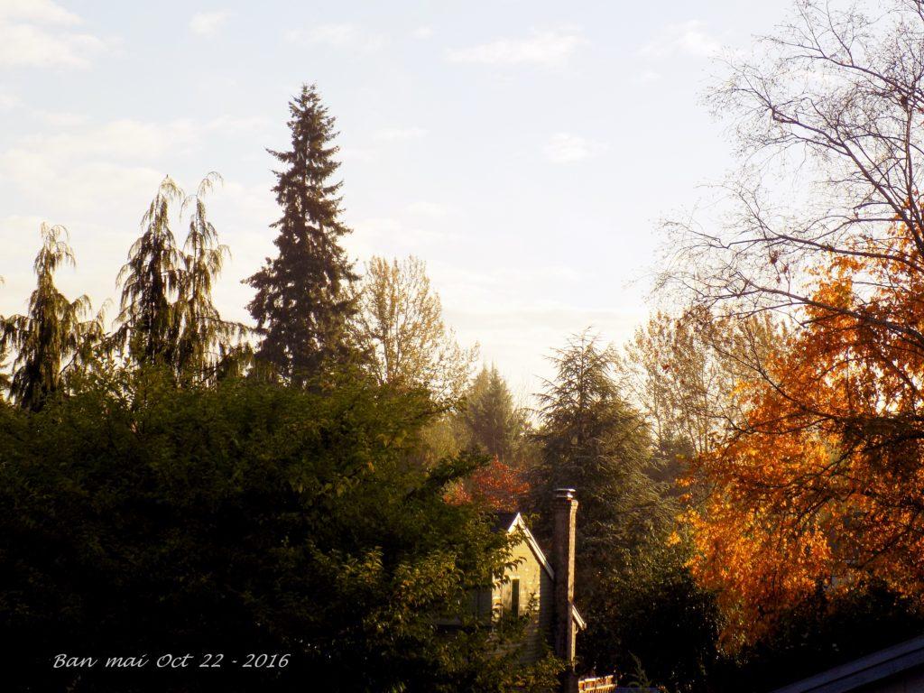sunrise-oct-22-2016-6