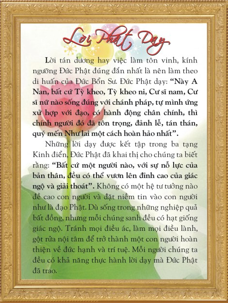 loi-phat-day