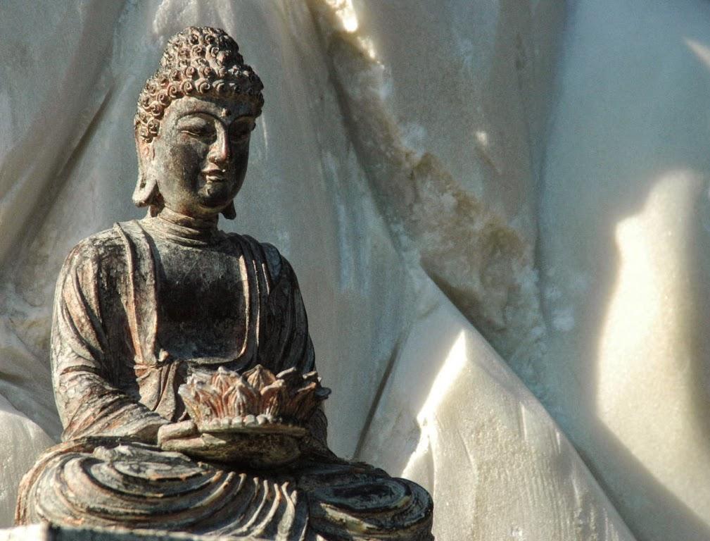 Le Vu Lan 2014 tai Buu Hung Temple (5)