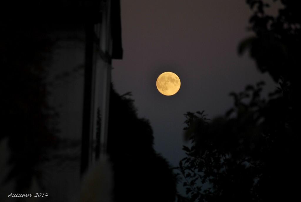 Full Moon thang 10 - 2014 (21)