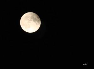 Lunar Eclipse Sept 27 - 2015 (7)