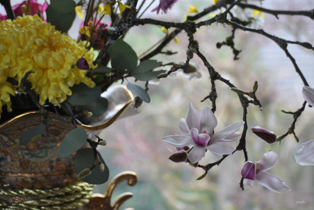 Magnolia's Tet 2015 (2)
