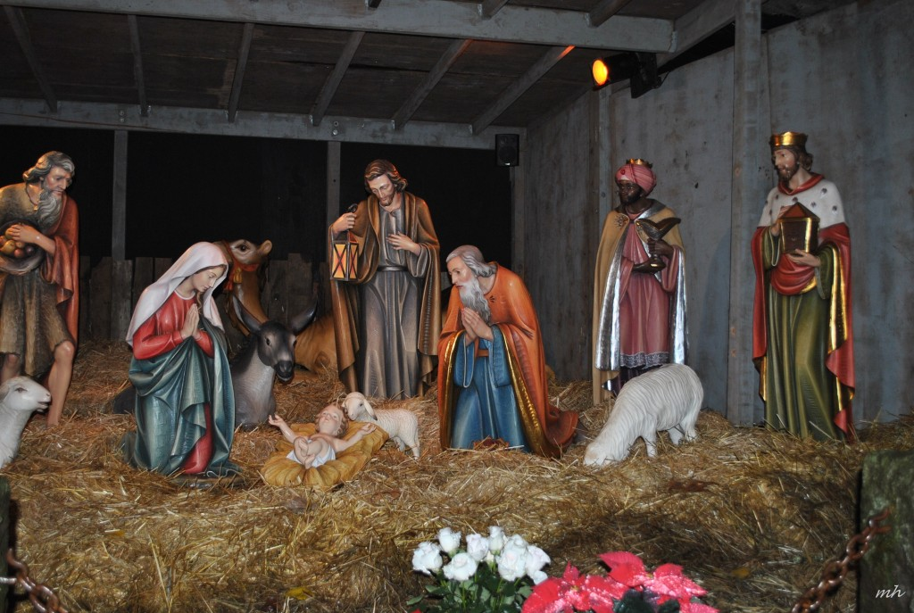 The Christmas Grotto 2015 (7)